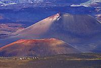 Horseback riding through Haleakala crater, island of Maui