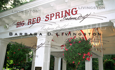 The Big Red Spring, in Saratoga Race Course. Saratoga Race Course, Saratoga Racetrack, beautiful horse racing, Thoroughbred racing, horse, equine, racehorse, morning mood scenic, mood, horse racing, pretty, racehorse, horse, equine, racetrack, track, saratoga