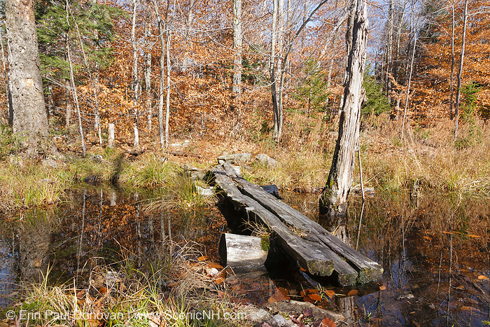 Bog Bridge along the Guinea Pond Trail in Sandwich, New Hampshire during the autumn months. This trail follows the old Beebe River Railroad bed which was a logging railroad that was in operation from 1917-1942.