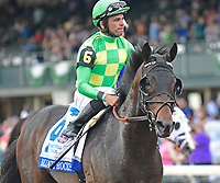 Lexington KY - October 7 Ballagh Rocks finishes 3rd in the Shadwell Turf Mile (Grade 1).  October 8, 2017