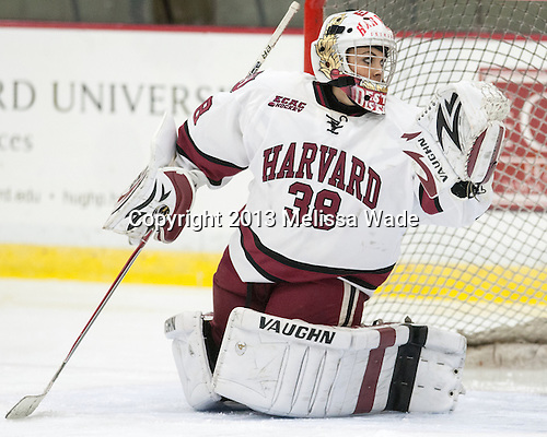 Emerance Maschmeyer (Harvard - 38) - The Harvard University Crimson defeated the visiting Princeton University Tigers 4-0 on Saturday, October 26, 2013, at Bright-Landry Hockey Center in Cambridge, Massachusetts.