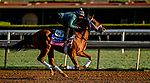 October 28, 2019 : Breeders' Cup Juvenile Fillies Turf entrant Sweet Melania, trained by Todd A. Pletcher, exercises in preparation for the Breeders' Cup World Championships at Santa Anita Park in Arcadia, California on October 28, 2019. Scott Serio/Eclipse Sportswire/Breeders' Cup/CSM