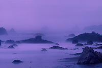 769550255 during a clearing pacific ocean storm fog and mist at sunset create an eerie calm over the sea stacks lining harris beach state park along the southern coast of oregon