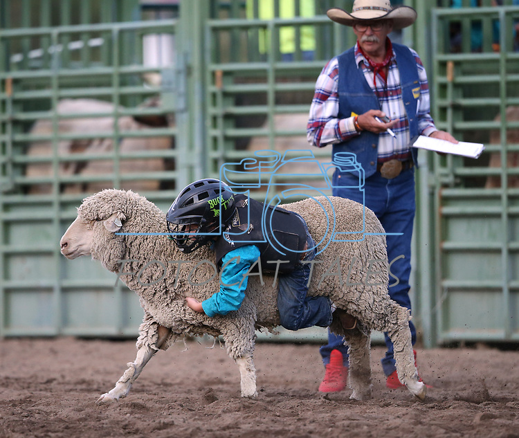 Breighdon Swenson, 7, competes in the Mutton Busting event at the 5th Annual Carson City Bulls, Broncs &amp; Barrels event at Fuji Park, in Carson City, Nev., on Saturday, July 29, 2017. <br /> Photo by Cathleen Allison/Nevada Photo Source