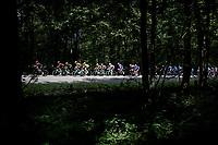 yellow jersey / GC leader Mike Teunissen (NED/Jumbo-Visma) & team rolling through the forest<br /> <br /> Stage 3: Binche (BEL) to Épernay (FRA)(214km)<br /> 106th Tour de France 2019 (2.UWT)<br /> <br /> ©kramon
