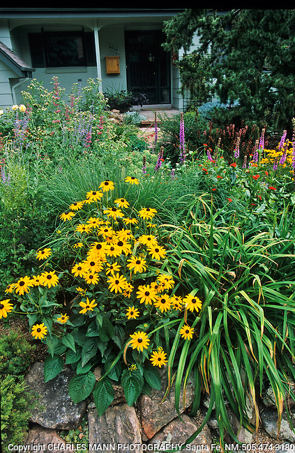 A lush and lively home garden developed by and built by Rochelle Eliasen with the help of her husband Vern at their home in Denver.