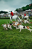 USA, Tennessee, Nashville, Iroquois Steeplechase, Susan Walker and the Parade of Hounds before the 7th and final race