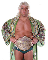 Ric Flair Reportedly Still In Critical Condition