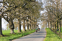 Motorcyclists on tree-lined country road, Stanway, Gloucestershire, United Kingdom