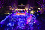 holiday lights, Dominion GardenFest of Lights at Lewis Ginter Botanical Garden in Richmond, Virginia, USA