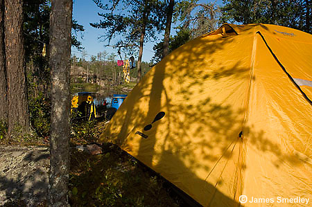 View of a yellow tent at a wilderness campsite.