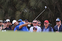 Patrick Reed (USA) on the 2nd fairway during the Second Round - Foursomes of the Presidents Cup 2019, Royal Melbourne Golf Club, Melbourne, Victoria, Australia. 13/12/2019.<br /> Picture Thos Caffrey / Golffile.ie<br /> <br /> All photo usage must carry mandatory copyright credit (© Golffile | Thos Caffrey)