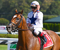 Heart to Heart (no. 1), ridden by Irad Ortiz Jr. and trained by Brian Lynch, wins the 58th running of the grade 2 Bernard Baruch Handicap for three year olds and upward on September 04, 2017 at Saratoga Race Course in Saratoga Springs, New York. (Bob Mayberger/Eclipse Sportswire)