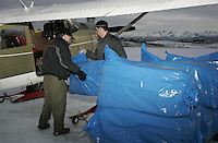 Saturday, Feb. 18, 2006  Anchorage, Alaska. Volunteer Iditarod Airforce pilot Bob Elliot and reace manager Andy Willis load straw into his Cessna plane prior to flying them  out to checkpoints along the trail.  Each musher is given one bale of straw at a checkpoint to bed their dogs down.