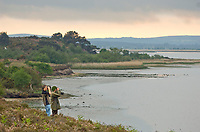 BNPS.co.uk (01202 558833)<br /> Pic: Phil Yeomans<br /> <br /> Twitchers look out over Poole harbour.<br /> <br /> Attempts to get ospreys to recolonise southern England for the first time in 200 years have been boosted after a chick involved in a conservation programme was spotted in Gambia.<br /> Experts hope the bird of prey which became extinct in large swathes of western Europe at the beginning of the 19th century will once again establish a population at Poole Harbour in Dorset.<br /> To achieve this, for the past three years they have gradually reintroduced osprey chicks there and monitored their progress.<br /> Now, one of the chicks in the programme has been spotted in the West African country having successfully completed the perilous 4,000 mile