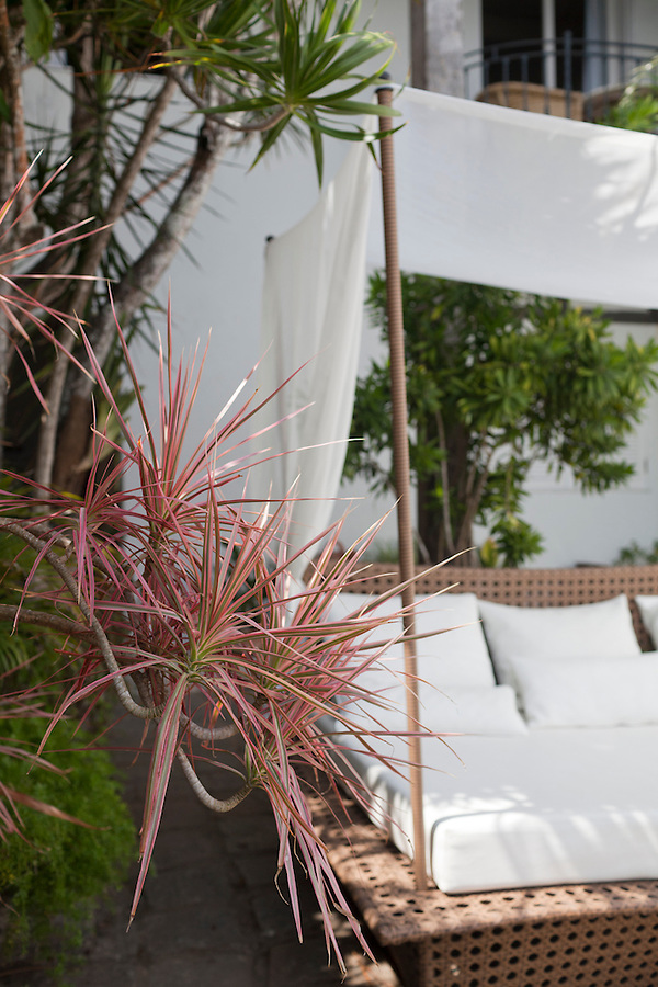 relaxing bali bed in a small, rustic courtyard of Casa Brancas Boutique Hotel and Spa
