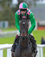 Acey Milan ridden by Aiden Coleman and trained by Anthony Honeyball during Horse Racing at Plumpton Racecourse on 4th November 2019