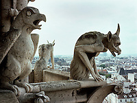 ACID RAIN (SO2) DAMAGE: LIMESTONE GARGOYLES<br />