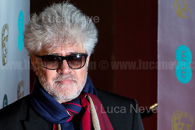 Pedro Almodovar. <br /> <br /> London, 12/02/2017. Red Carpet of the 2017 EE BAFTA (British Academy of Film and Television Arts) Awards Ceremony, held at the Royal Albert Hall in London.<br /> <br /> For more information please click here: http://www.bafta.org/