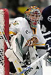 2007-01-05 NCAA: UNH at UVM Men's Hockey