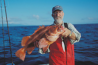 Dave Vedder holds a large red rockfish, which appears to be a Rougheye Rockfish, one of several species of red rockfishes from the Sebastes family caught on the Pacific Coast, Queen Charlotte Islands, British Columbia, Canada.