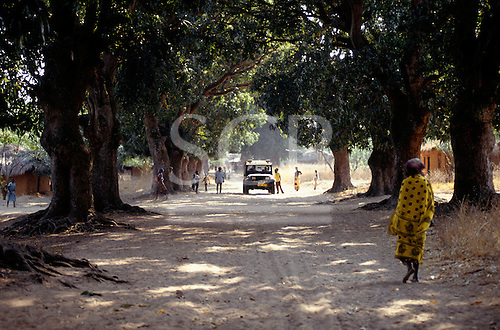 Ujiji, Tanzania. Tourist safari four wheel drive Jeep on a dirt road below mango trees on the Slave Route.