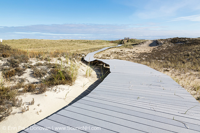 Parker River National Wildlife Refuge on Plum Island, Massachusetts during the autumn months.