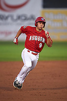 Auburn Doubledays shortstop Max Schrock (9) running the bases during a game against the Mahoning Valley Scrappers on September 4, 2015 at Falcon Park in Auburn, New York.  Auburn defeated Mahoning Valley 5-1.  (Mike Janes/Four Seam Images)
