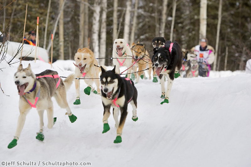 DeeDee Jonrowes sled dog team running on trail on Long Lake @ 2006 Iditarod Restart Willow AK Winter