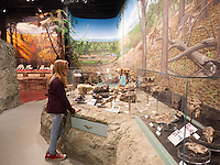 Aubrey McClaran exploring the Thomas Condon Paleontology Center at the John Day Fossil Beds National Monument
