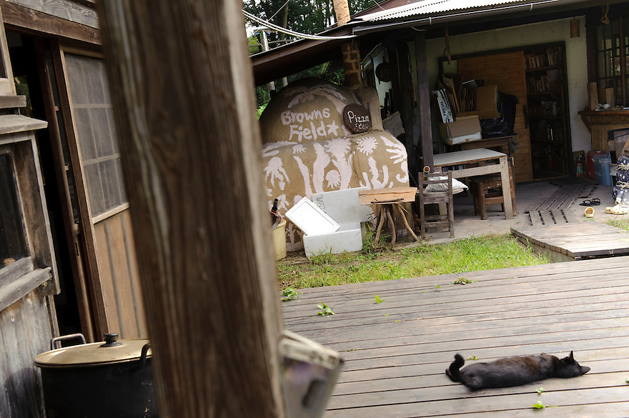 One of the farm cats, Brown's Field, Isumi, Chiba Prefecture, Japan, August 9, 2009.The organic farm introduces healthy and sustainable living in the Japanese countryside. It is staffed by the Brown family and volunteers from around the world.