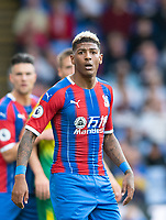 Crystal Palace Patrick van Aanholt during the Premier League match between Crystal Palace and Norwich City at Selhurst Park, London, England on 28 September 2019. Photo by Andrew Aleksiejczuk / PRiME Media Images.