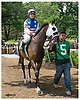 Fly Past winning the Ladies Fegernti Amateur Riders at Delaware Park on 6/10/06