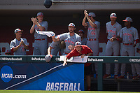 The North Carolina State Wolfpack bench celebrates following a 3-run triple by Evan Edwards (not pictured) during the game against the Northeastern Huskies at Doak Field at Dail Park on June 2, 2018 in Raleigh, North Carolina. The Wolfpack defeated the Huskies 9-2. (Brian Westerholt/Four Seam Images)