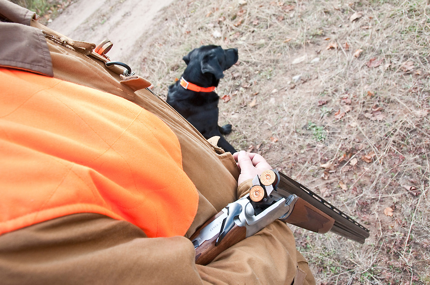 Close up of an upland hunter with an over-under double barrelled shotgun broke over his arm while a black Labrador retriever stands nearby.