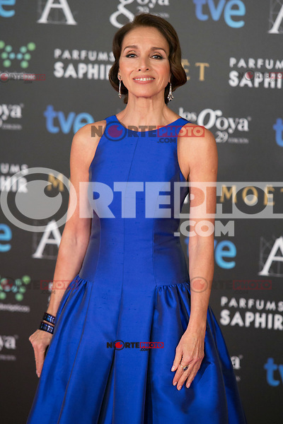 Ana Belen attend the 2015 Goya Awards at Auditorium Hotel, Madrid,  Spain. February 07, 2015.(ALTERPHOTOS/)Carlos Dafonte) /NORTEphoto.com