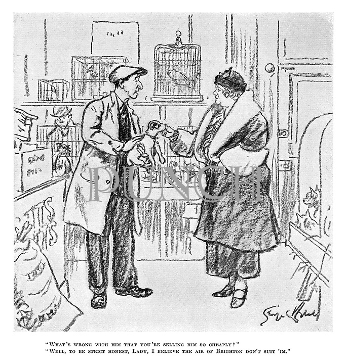 """""""What's wrong with him that you're selling him so cheaply?"""" """"Well, to be strict honest, lady, I believe the air of Brighton don't suit 'Im."""""""