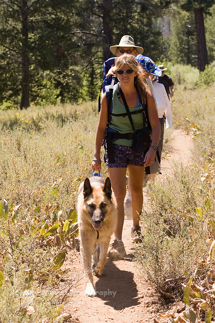 Woman hiking with her child and dog on the Sagehen Creek trail,Tahoe National Forest California