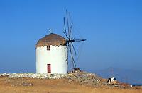 - Naxos island (Cyclades), wind mill near the Vivlos village..- isola di Naxos (Cicladi), mulino a vento presso l'abitato di Vivlos..