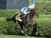 10th Sword Dancer - Flintshire