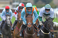 Get The Appeal centre ridden by Harry Cobden and trained by Paul Nicholls in The Heart Turn Up The Feel Good Mares' Novices' Hurdle during Horse Racing at Plumpton Racecourse on 4th November 2019
