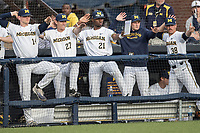Michigan Wolverines bench against the Michigan State Spartans during the NCAA baseball game on April 18, 2017 at Ray Fisher Stadium in Ann Arbor, Michigan. Michigan defeated Michigan State 12-4. (Andrew Woolley/Four Seam Images)