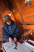 Europe/Finlande/Laponie/Lac Jerisjärvi: Repas traditionnel lapon dans la kota du pêcheur: Yaros -<br /> Yaros vide ses poissons: Corégone blanc, Lavaret du lac
