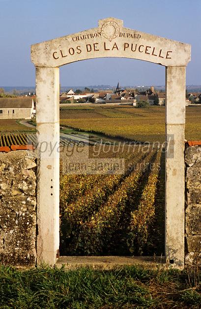 """Europe/France/Bourgogne/21/Côte d'Or/Puligny-Montrachet: Portail et vignoble du Clos """"les Pucelles"""""""