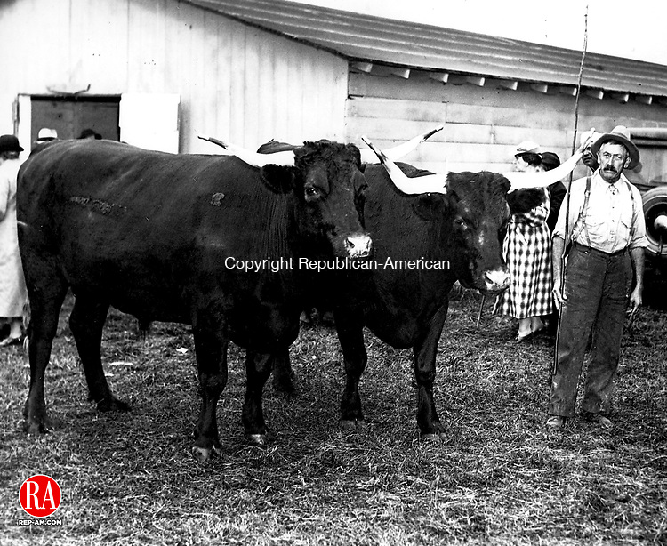 1936- DANBURY - A farmer and his prize bulls at the Great Danbury State Fair.