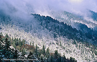Sunlight on fresh snowfall, from Morton Overlook, Great Smoky Mountains National Park, Tennessee