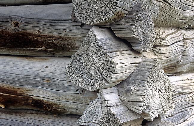 Detail, Old Log Cabin