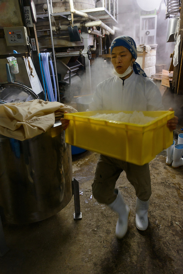 "Brewery worker transferring rice from a steamer. Tsuji Honten Sake, Katsuyama town, Okayama Prefecture, Japan, January 31, 2014. Tsuji Honten was founded in 1804 and has been at the cultural centre of the town of Katsuyama for over two centuries. 34-year-old Tsuji Soichiro is the 7th generation brewery owner. His elder sister, Tsuji Maiko, is the ""toji"" master brewer."