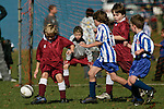 Pukekohe AFC 9th Grade Blue Fins vs Papakura Kilmarnock football game played at Bledisloe Park Pukekohe on Saturday May 17th 2008.
