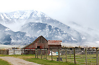 Stormy day, old barn, Mt. Baldy, Swan Valley, Idaho